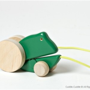 Wooden Pull Toy-Frog