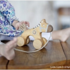 Wooden Pull Toy - Horse 5